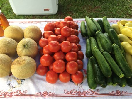Edenton Farmers Market, Wednesday Farmers Market